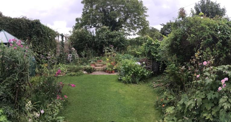 Garden Aug 2017