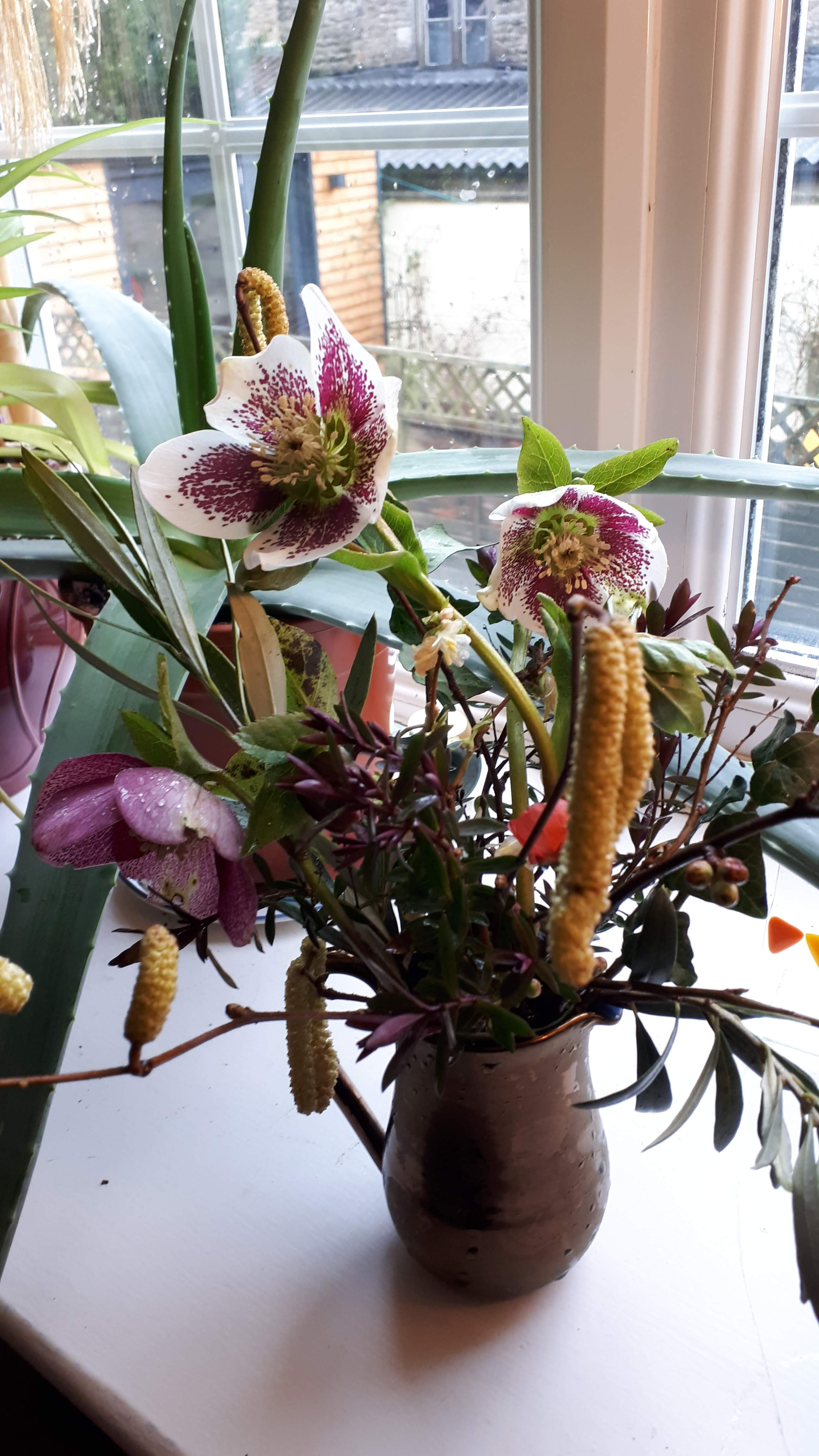 In A Vase on Monday: Hebe and Hellebore