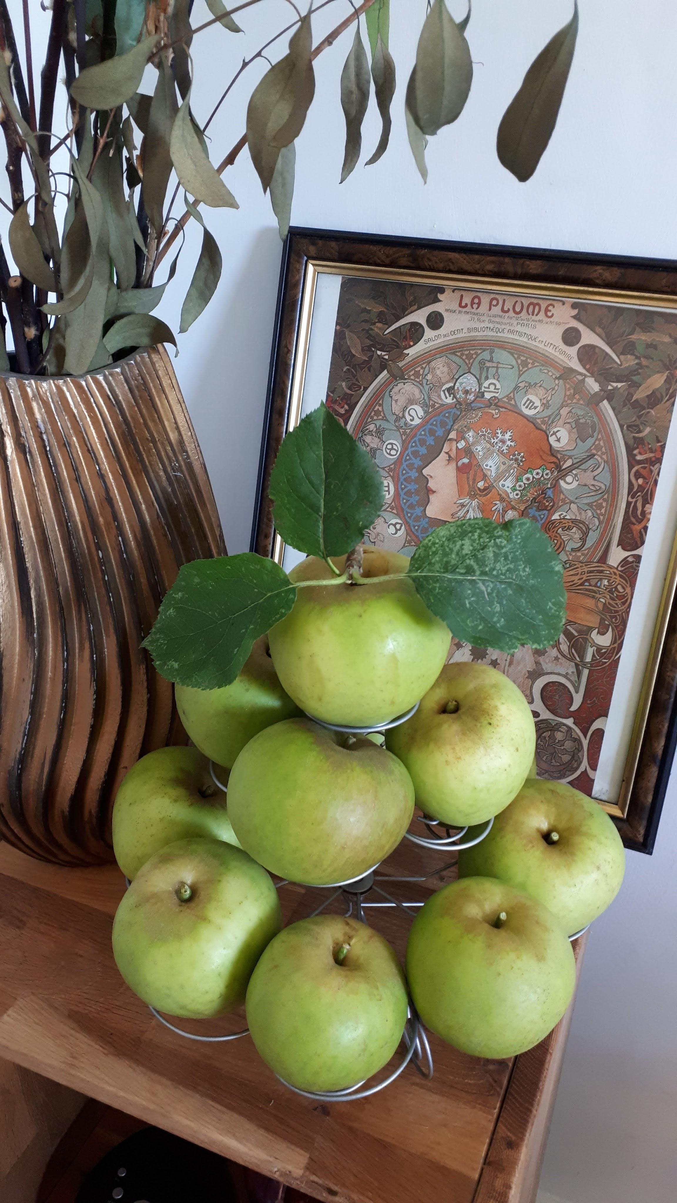 Six on Saturday: How I like them apples